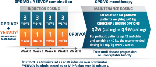 OPDIVO + YERVOY and OPDIVO monotherapy dosing schedule