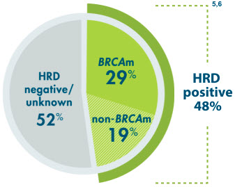 48% of patients were HRD positive, which includes BRCAm and non-BRCAm patients
